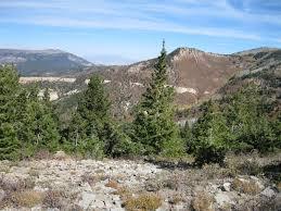 Mt Linnaeus